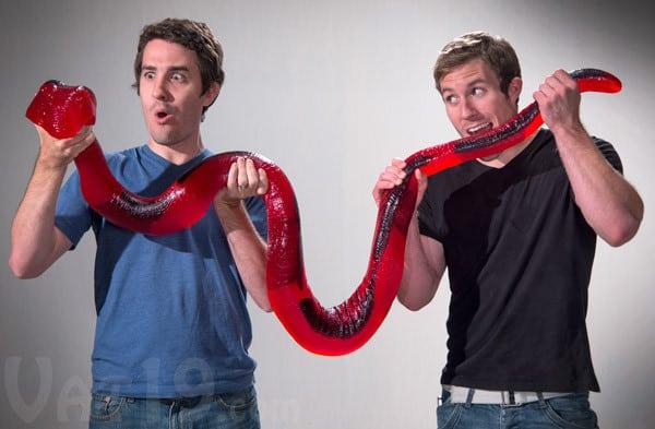 Meet the 8ft long lollie snake!