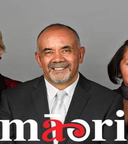 Maori Party fail to back Helen Clark for UN job