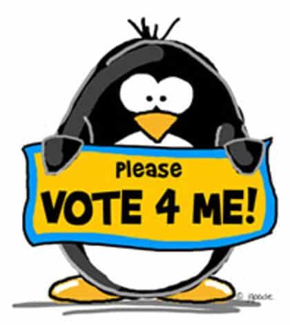 No Vote For Me!