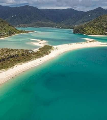 New Zealand buys a beach