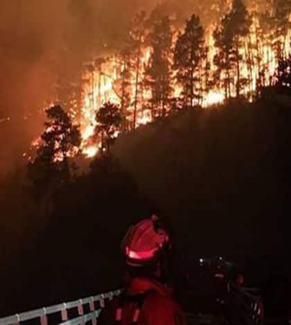 Hamner Springs Cut Off By Bush Fire