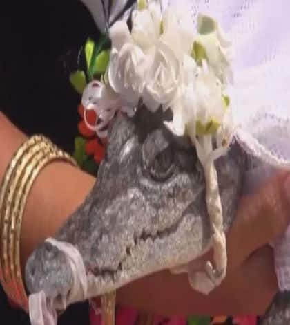 Mexican Mayor marries crocodile